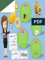 Infografia de Paper de Pitaya