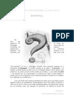 Ensayo y reflexiones acerca de la existencia.doc