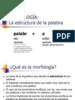 morfologia.ppt