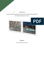 InformeDRP - Copia