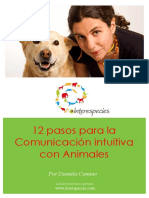 12 Pasos CTA eBook