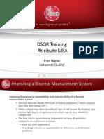 Attribute MSA Training