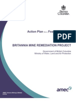 PMR Remediation Project Action Plan