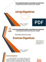 Portifolio Enzimas Digestivas