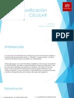 destoxificación celular.pptx