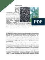 Datos asai - Frutos y Pulpa.docx