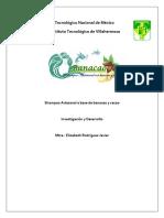 Investigacion de Innovacion de Shampo de Cacao y Bananas