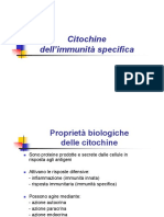 Citochine_immunita_specifica.pdf