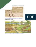 RECURSOS DIDÁCTICOS Imágenes Agricultura