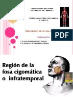 fosa-cigomatica-expo .pptx