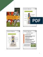 Peter-Schreiner-System.pdf