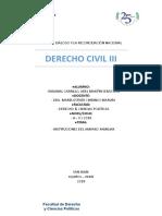 INSTITUCIONES SUPLETORIAS DE AMPARO FAMILIAR.docx