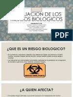 Evaluacion de Los Riesgos Biologicos Exposicion