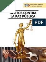 DELITOS CONTRA LA PAZ PÚBLICA.docx