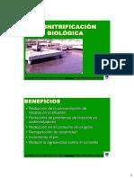 4.-Desnitrificacion-diapositivas.pdf