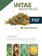 Remedios_ibook.pdf