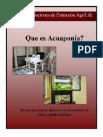 Acuaponia Chile