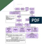 algoritmi tuberculosis (1).doc