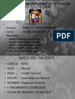INTERNA-CASO-01.pptx