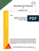 MS Intraplast CFG