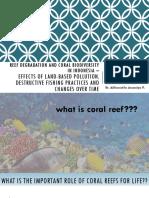 Reef Degradation