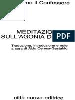 Meditazioni Sull'Agonia Di Gesu - Massimo Il Confessore