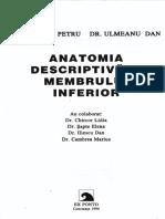 membrul inf-definitiv.pdf