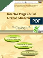 21964822 Insectos Plagas de Los Granos Almacenados