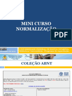 minicursonormalizacao.pdf