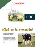 clonacion presentacion.pptx