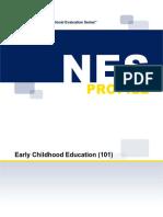 NES Profile 101