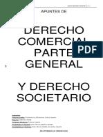 APUNTES DE DERECHO COMERCIAL.pdf