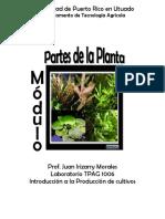 Modulo Partes de una Planta