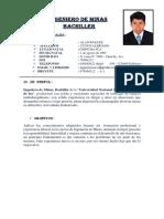 CV ALAN CUNO VALERIANO - copia.docx