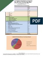 VNMAP Medical Mission 2010 Financial Report