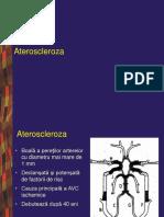 Boli Vasculare Cerebrale 2010 1