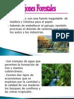 Regiones Forestales y Pesqueras