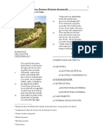 PASTOR DESESPERADO_comentario_completo.pdf