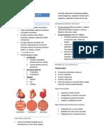 Generalidades de miología, osteología y miología de cabeza