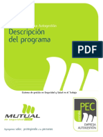 Descripcion Programa Pec Autogestion
