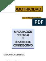 PSICOMOTRICIDAD-2