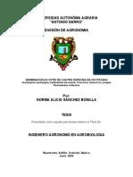 327216999-Germinacion-in-Vitro-de-Cuatro-Especies-de-Cactaceas.pdf