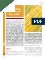 ca201-32.pdf
