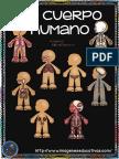 El Cuerpo Humano 2018 Parte1