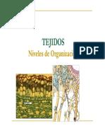 3.2 TEJIDOS ANIMALES y VEGETALES.pdf