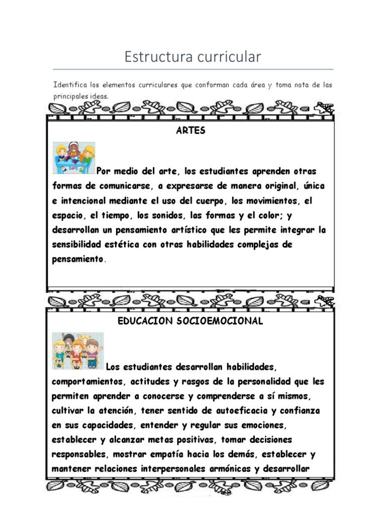 Act4 Estructuracurricular