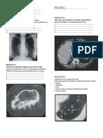 Guia radiologia