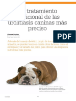 Tratamiento Nutricional Urolitiasis Caninas