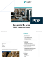 Caught in the Web- Wildlife Trade on the Internet