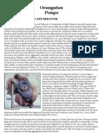 Primate Factsheets